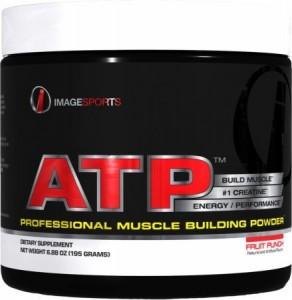 ATP Creatine