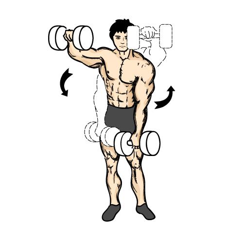 Wat zijn de beste oefeningen voor schouders?