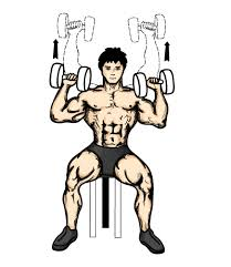 shoulder press met dumbbells