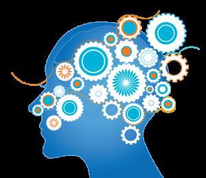 De beste supplementen voor je hersens: Nootropics