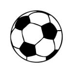 Met welke sportactiviteiten behaal je de beste resultaten?